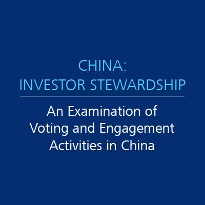 china investor stewardship