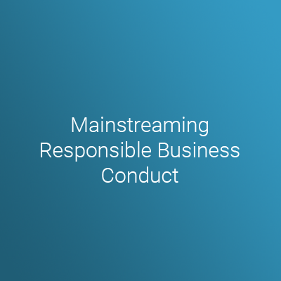 Mainstreaming Responsible Business Conduct Iss
