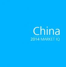 China 2014 Market IQ
