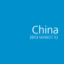 China 2013 Market IQ