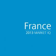 France 2013 Market IQ